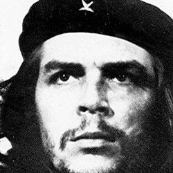 Volunteer for the Revolution